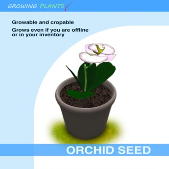 Growing Plants – Mesh Growable and Cropable Orchid