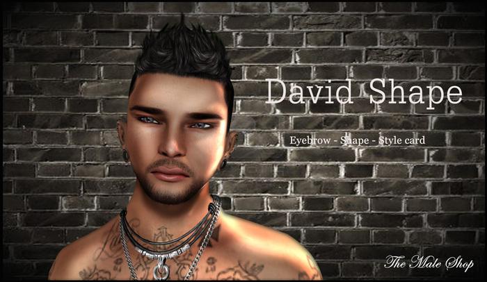 David Male Shape (The body co.) gift