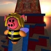 Tiny Pig Maya