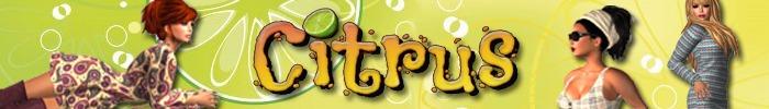 Citrus banner