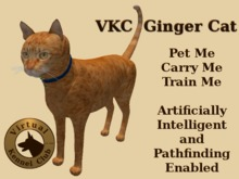 VKC® Ginger Cat - Artificially Intelligent (AI) Trainable Pathfinding Cat - No Food Required - Virtual Kennel Club Pets