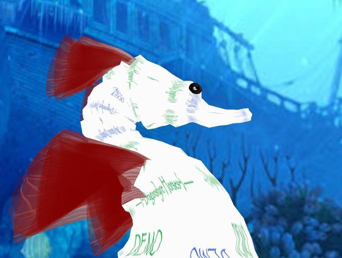 Karikko Seahorse Avatar DEMO wear me