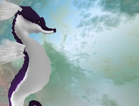 Karikko Seahorse Avatar ( Purple) wear me
