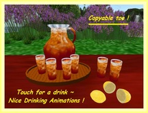 Homemade Ice Tea Set / Touch for Drink
