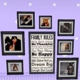 family rules and frames