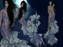 Boudoir -Sea Dragon Mermaid