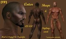 ANTAR Shape (BOXED)