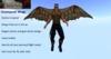 Wingpack1