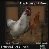 Farmyard Hens with sounds - Mesh