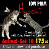 2 animated playing cats with flys and sound, gatos, katzen