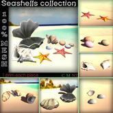 1 Prim Seashells Mesh Collection