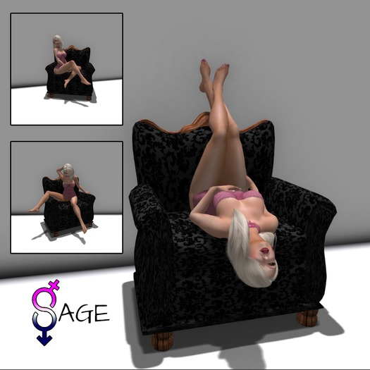 Sage Poses - 6 Pose Chair