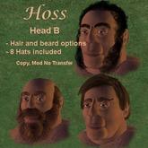 Hoss Head B (head,jaw,hair,beard,hats)
