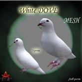 Mesh white dove full perm  only 3 prims