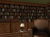 Dutchie mesh bookcases with rows of antique books