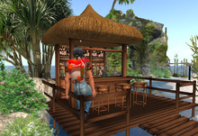 Tropical Tiki Bar with bridge, plants and rocks: beach bar