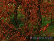 Big Tree with hands painted red foliage, Copy&Modify