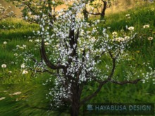 Big Tree with hands painted white blossom foliage, Copy&Modify