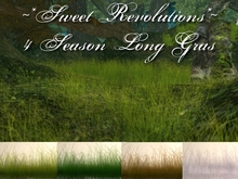 ~*SR*~ 4 Season Long Grass Box