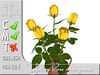 TERRASHOP-Yellow rose arrangement MC