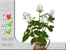 TERRASHOP-White rose arrangement MT