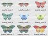 Butterfly key 1