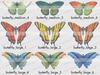 Butterfly key 2