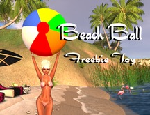 Beach Ball Freebie Toy