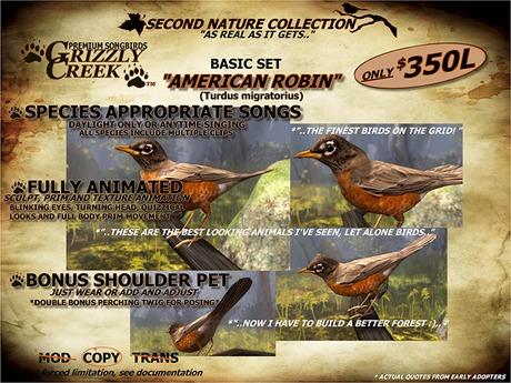 Grizzly Creek Songbird American Robin -Rez or Wear-