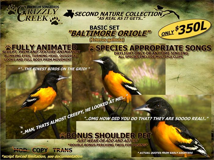 Grizzly Creek Songbird Baltimore Oriole -Rez or Wear-