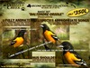 Grizzly Creek Songbird Baltimore Oriole -Rez or Wear-