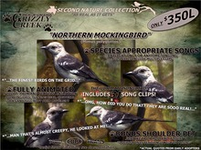 Grizzly Creek Northern Mockingbird Basic Package