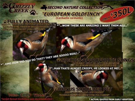 Grizzly Creek Songbird European Goldfinch -Rez or Wear-