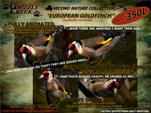 Grizzly Creek European Goldfinch Package