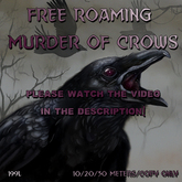 Souled Out Murder of Crows 10/20/30 meters