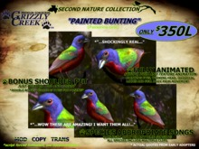 Grizzly Creek Painted Bunting Basic Package