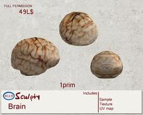 *~M`n B~* Brain  (box)
