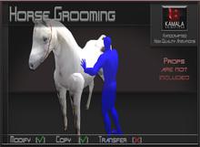 Chores Trades *Horse Grooming* Copyable Poseball