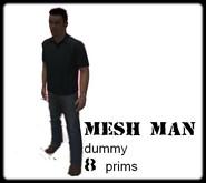 Handsome man dummy  8 prims