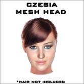 Barbara mesh head mp box