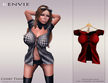 KENVIE . mesh Cosby Shirt Red