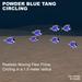 7 Flex Powder Blue Tang circling