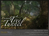 Skye enchanted tree tunnel 2