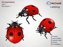*M n B* Ladybug (meshbox)