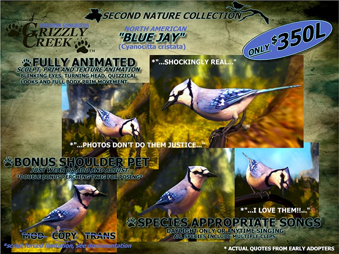 Grizzly Creek Sculpted  Blue Jay -Rez or Wear-