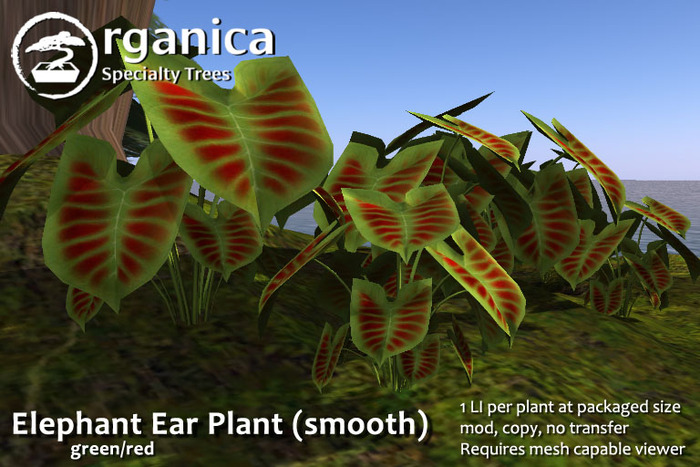Second Life Marketplace Organica Elephant Ear Plant Smooth