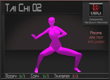 Activities *Tai Chi 02* Copyable Poseball