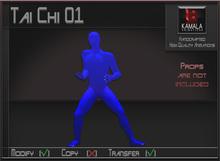 Activities *Tai Chi 01* Transferable Poseball