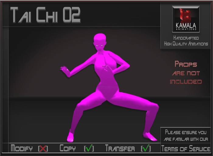 Activities *Tai Chi 02* Animations for Builders