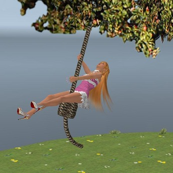 Rope Swing V2